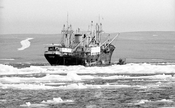 Ship in Resolute Bay August 1968